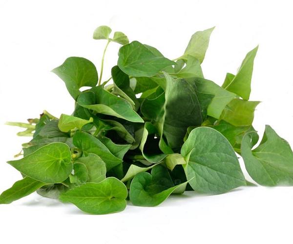 Ăn rau gì mát và đẹp da - Bạn sẽ bất ngờ khi biết công dụng của những loại rau này 4